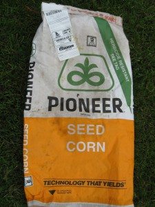GM Contamination GMO seed