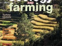 EandF 2-2014 cover618