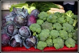 Organic Food, little italy