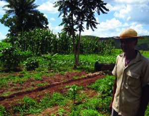 Agro-Ecology, small scale farmer