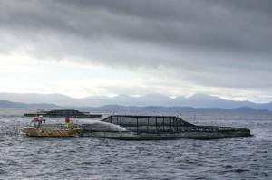 Aquaculture, Fish farm