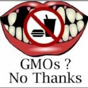 GMO No thanks - pro-GMO lobby from USA