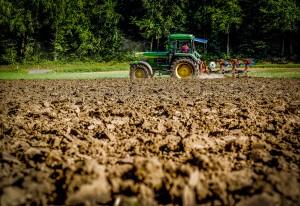 soils 2